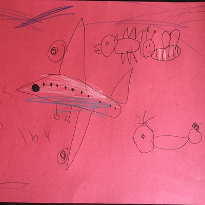 Cassidy drew things that fly. ( Airplane, helicopter, bird & a bee)