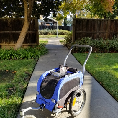 customer photo of Booyah Strollers